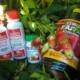 Чем подкормить клубнику во время плодоношения?